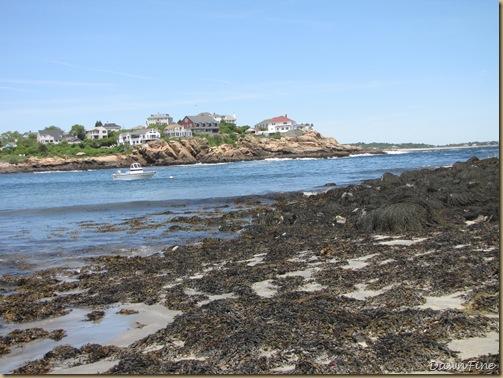 Good Harbor beach, Passport rest._20090617_153
