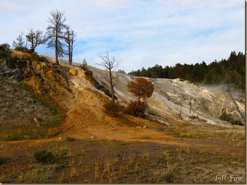 Yellowstone Jeffs pics_20090906_016
