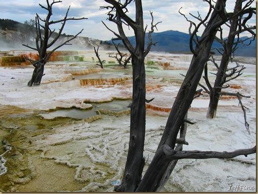 Yellowstone Jeffs pics_20090906_026