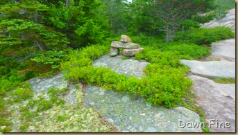 Gorham mt hike_121