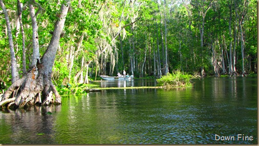 Silver Springs State Park_019