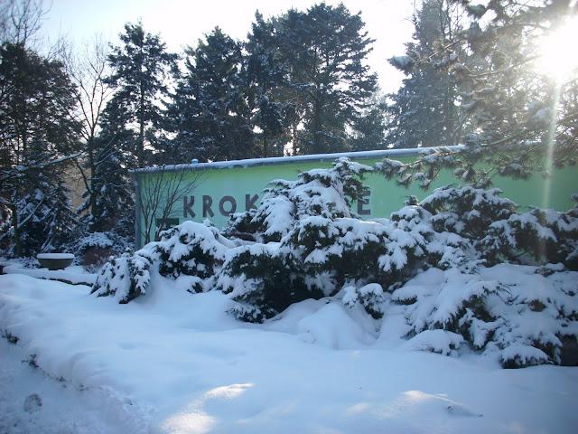 Pawilon Krokodyli - Zoo Wrocław