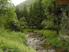 Reka u Ruplju
