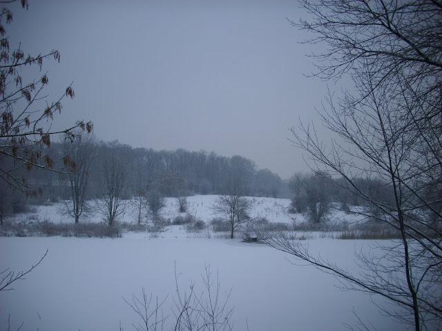 Wybieg sawanny i staw - śniegu pełno, zwierzaków brak...