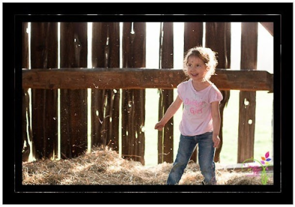 family_photo_shoot_farm-19