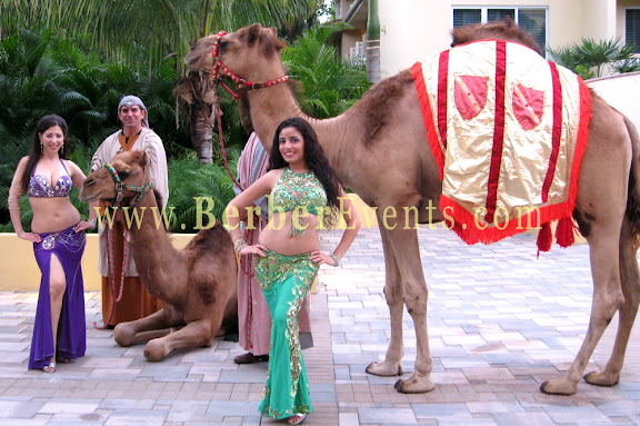 Live Camels with Belly Dancers at a Moroccan Corporate themed event in Doral golf Resort Miami, Florida