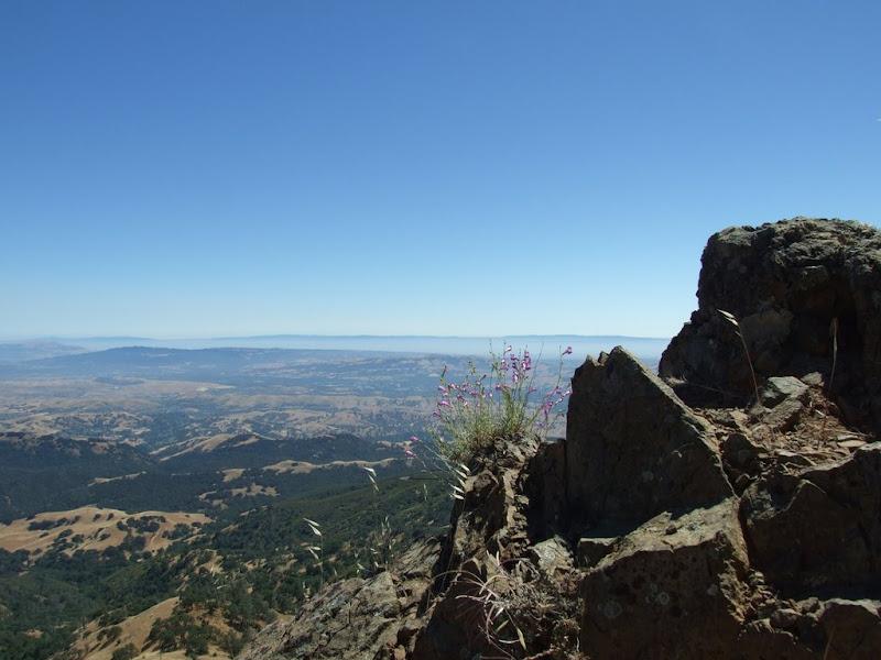 Mount Diablo State Park