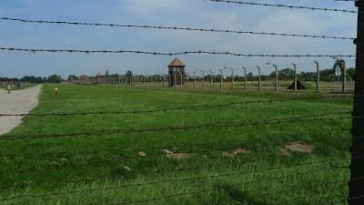 Auschwitz 2 (Berkinow)