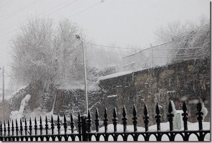Snow 196