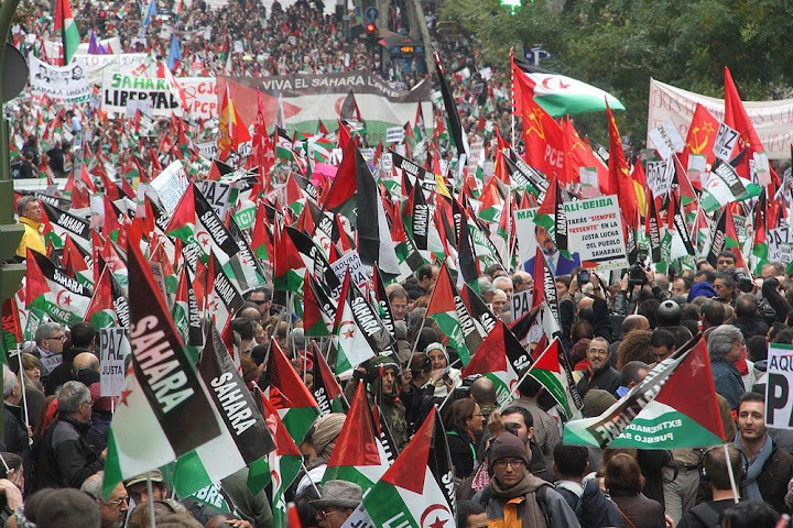 Manifestación 13 de noviembre Sáhara