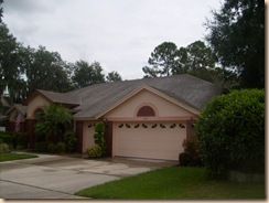 Tampa Roof Cleaning 039