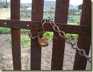 rusty padlock_1_1