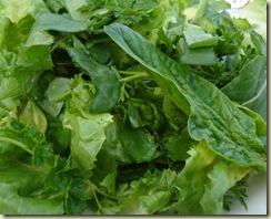 09 salad_1_1