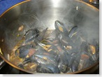 mussels chorizo2_1_1_1