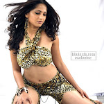 Sexy telugu actress anushka glamour photos   part 3