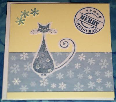 Sininen kisu kermanvärisellä korttipohjalla