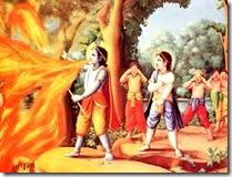 Krishna protecting His devotees