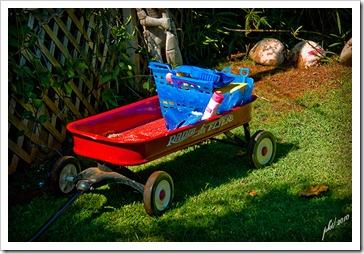 72-res-DSC_0102-red-wagon-beach-supplies