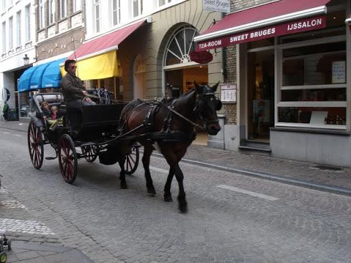 Typische paardenkoets