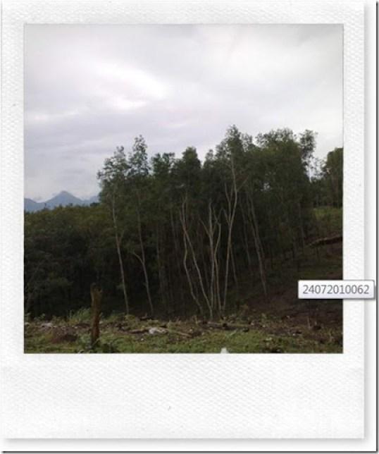 Scenery 2
