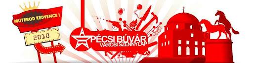 blog, Budapest, interjú, Pécs, Pécsi Búvár