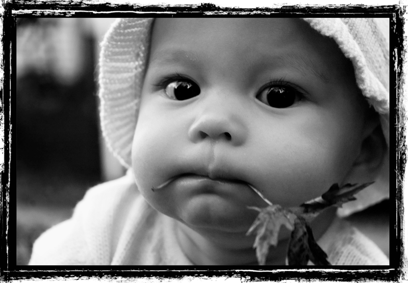 baby, leaf, fall, leaf in mouth, cute, daughter, kid, sweet, beautiful, girl
