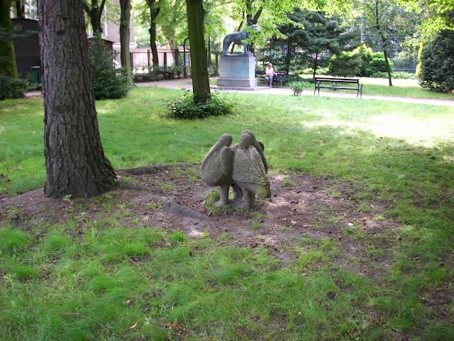 Pelikany - Stare Zoo Poznań