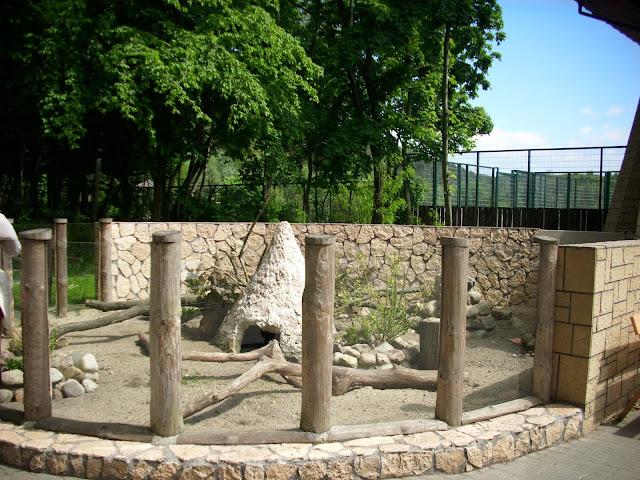 Zewnętrzna część wybiegu surykatek w oliwskim zoo