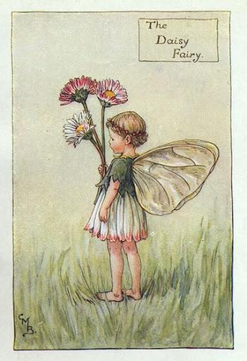 daisy_flower_fairy.jpg