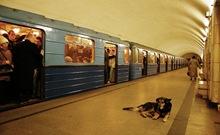 Perro en Metro Moscu5