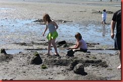 Sandcastler 377