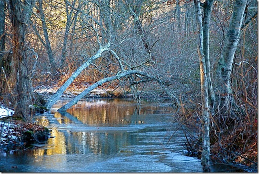 photoshare Winters Creek Harwich MA captpaulge