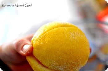 preserving lemons 007