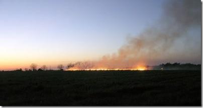 fieldburning