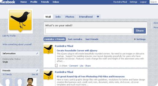 facebook-theme2