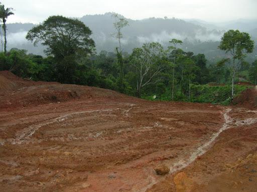 Bosque Protector Palo Seco y tierras Ngobes concesionadas a AES Corporation para el desarrollo del Proyecto Hidroeléctrico Chan 75, en Bocas del Toro.