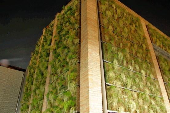 jardín vertical jardines verticales green wall ecosistema vertical vertical paisajismo rubí barcelona