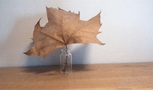 Decorar otoño con hojas
