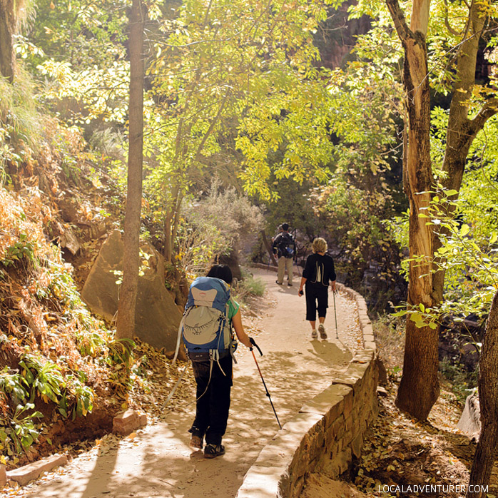 Riverside Walk (15 Best Zion National Park Hikes).