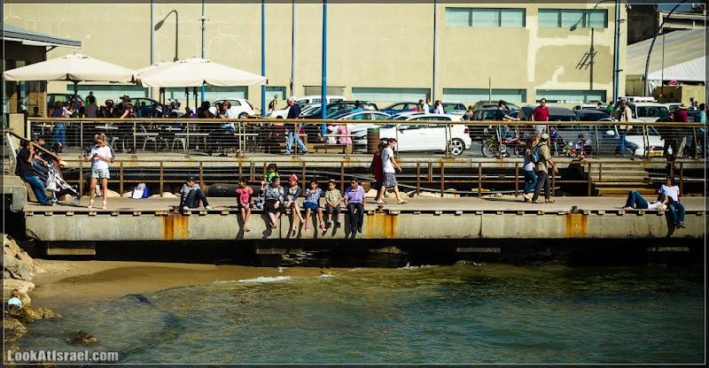Одно фото / Тель Авив, порт
