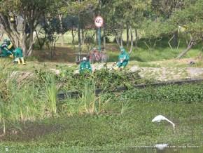 Operarios en el Humedal Tibabuyes