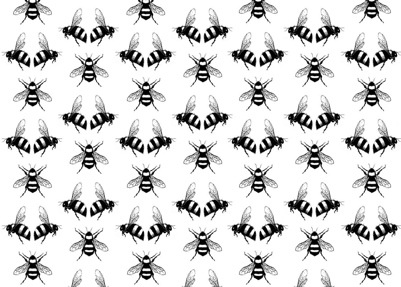 Bee Pattern Background By Debra Hughes Via Shutterstock