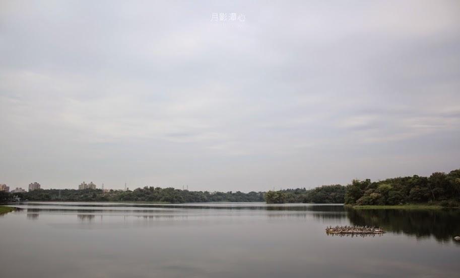 嘉義東區景點,月影潭心-2