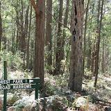 Lowden Forest  Park--NSW-Australia 2005 & 2007