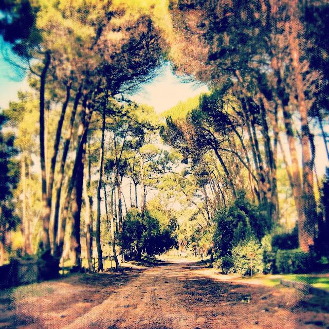 Cariló, provincia de Buenos Aires, Argentina