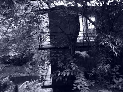 rightgreen: 熱鬧的彼岸:和美山│幸福樂園廢墟