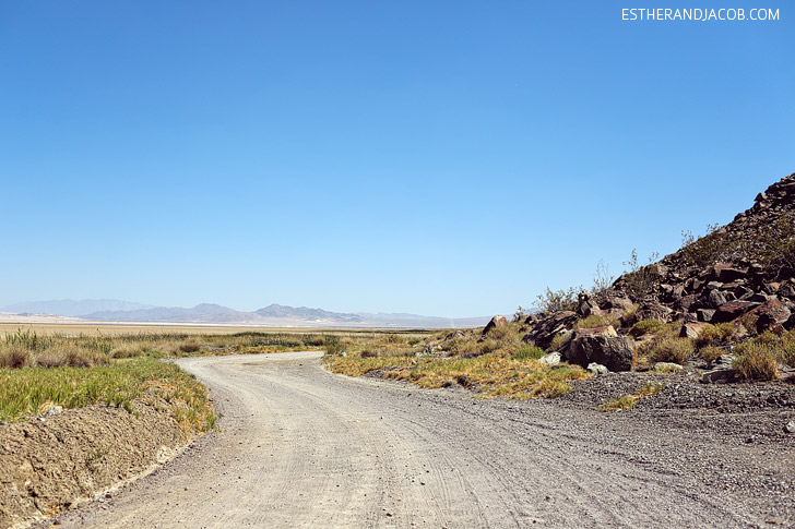 Local Adventures: Zzyzx Road California.