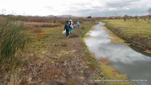 Canal perimetral lleno de agua, a la izquierda el humedal completamente seco.