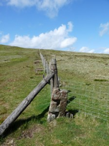 Fence or Boundary Stone on the descent from Blake Fell.