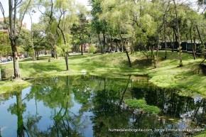 Espejo de agua del Humedal Chicú